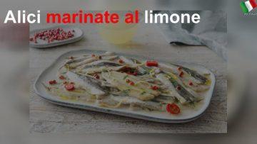 Alici-marinate-al-limone-attachment