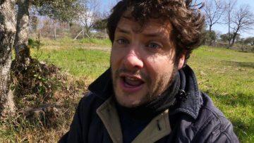 Asparagi-selvatici-come-trovarli-e-raccoglierli-attachment