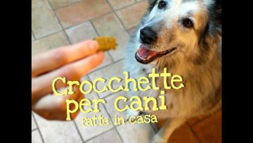 CROCCHETTE-PER-CANI-FATTE-IN-CASA-DA-BENEDETTA-Homemade-Dog-Food-attachment